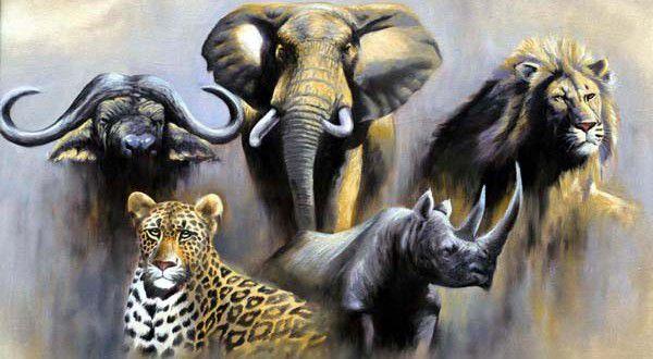 ray_mbugua_wildlife-600x330