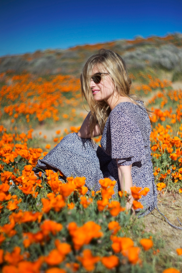 springpoppiescalifornia5